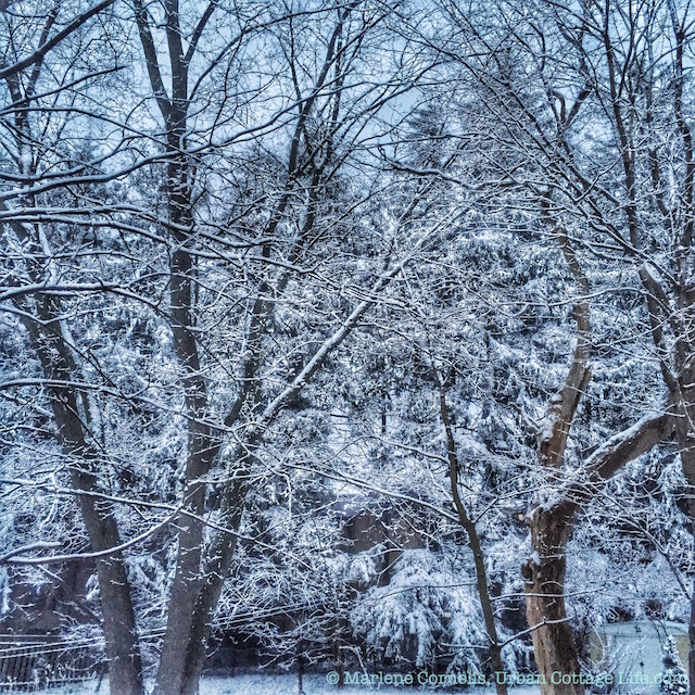 8PM April 2 - Light & Snow | © UrbanCottageLife.com