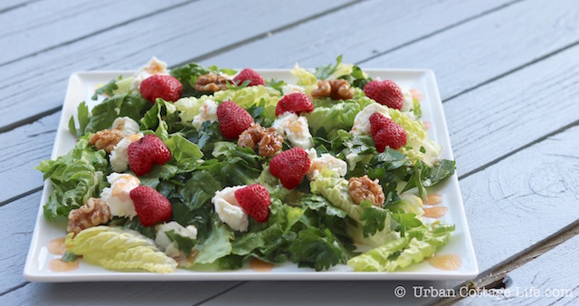 Pickled Strawberry, Goat Cheese & Honeyed Walnut Salad | © UrbanCottageLife.com