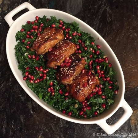 Pomegranate Chicken Thighs on Kale & Grain Salad  © UrbanCottageLife.com 2016