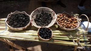Wild Fruits and Dried Vegetables at Amagugu