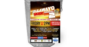 5 things that made the Bulawayo Music Carnival 2 the real trash