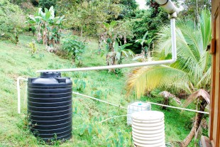 Our natural rain-water system