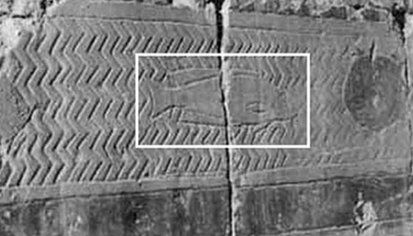 tilapia hieroglyphic