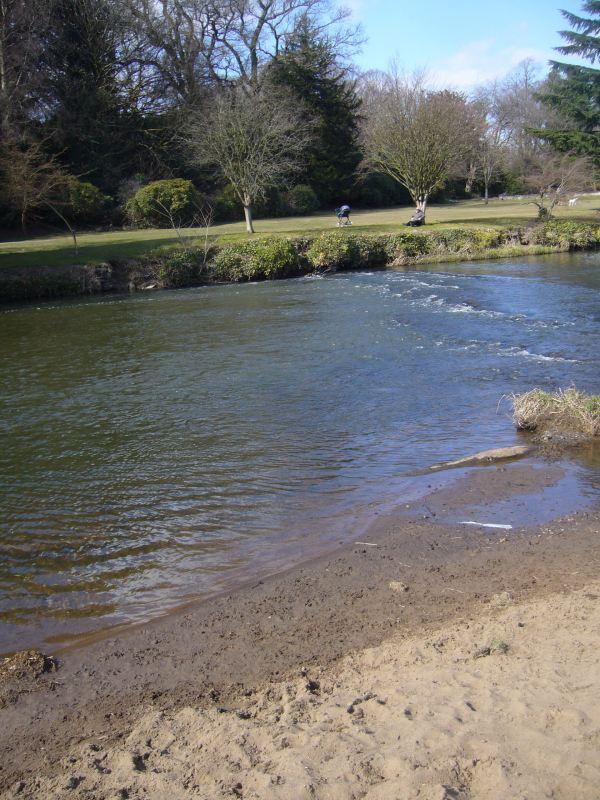 The Sandy Pool