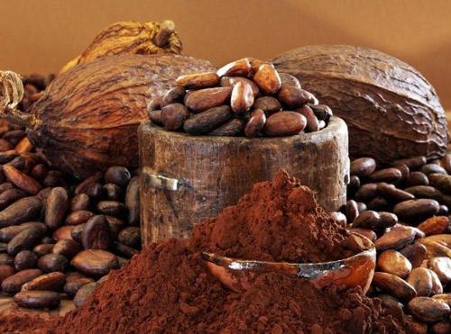 cocoa_06