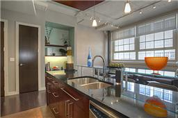 Montgomery Plaza Condo Kitchen