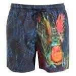 Etro - Psychedelic frog printed swim shorts