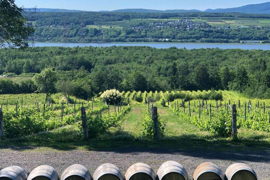 Ile d'Orleans Wine Tour