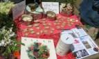 Jun 2013: Edible Flower celebration, Regents Park