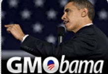 Obama Signs 'Monsanto Protection Act': 5 Terrifying Things To Know About The HR 933 Provision