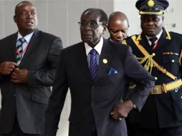 Mugabe Urged Africans & African-Americans to Work Together   We Agree