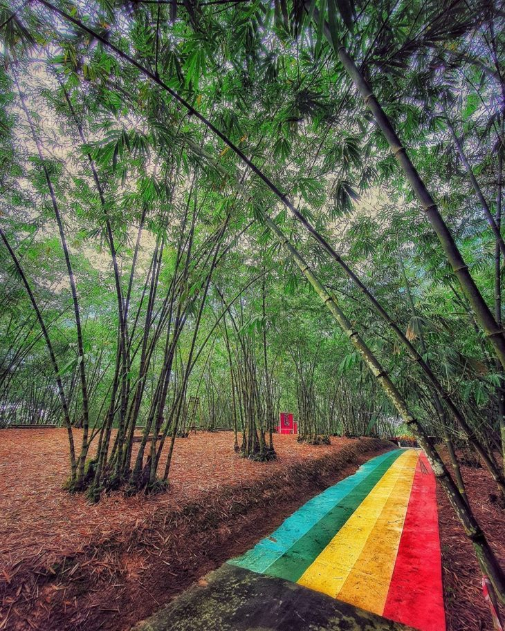 Putuo Villager Rainbow Path