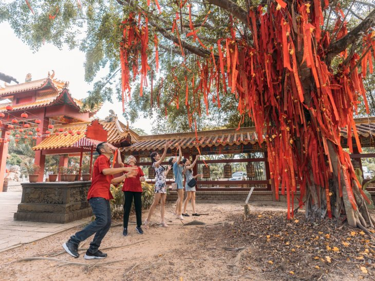 putuo-village-wishing tree