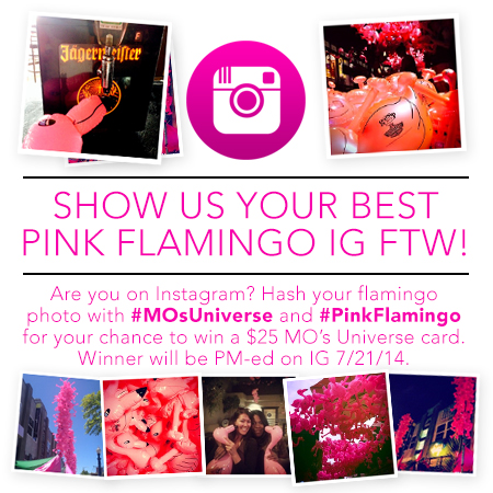 Pink Flamingo Instagram Contest