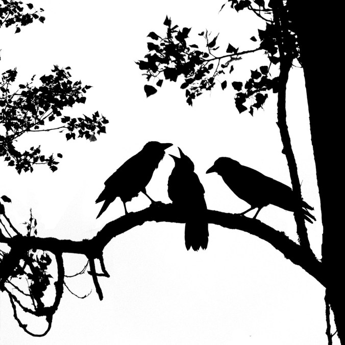Crow Family