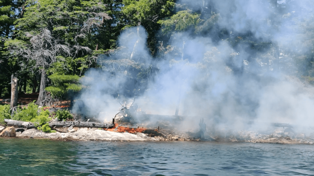 Fallen log burning on OSA Lake in Killarney Provincial Park
