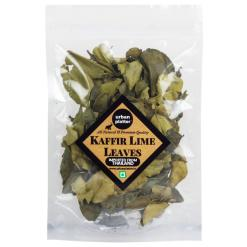 Urban Platter Dried Kaffir Lime Leaves, 10g