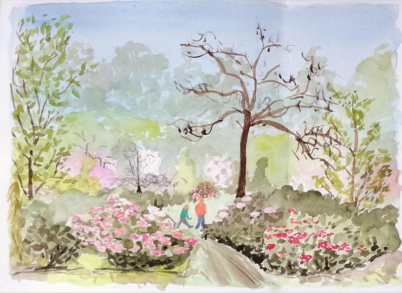 Het Belmonte Arboretum: mijn vaste stekje door de jaren heen