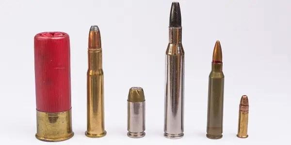 Ammo Calibers Lined Up