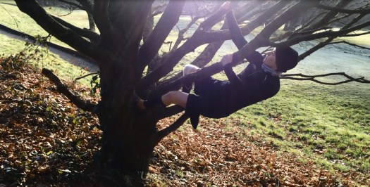 tree-scrambling