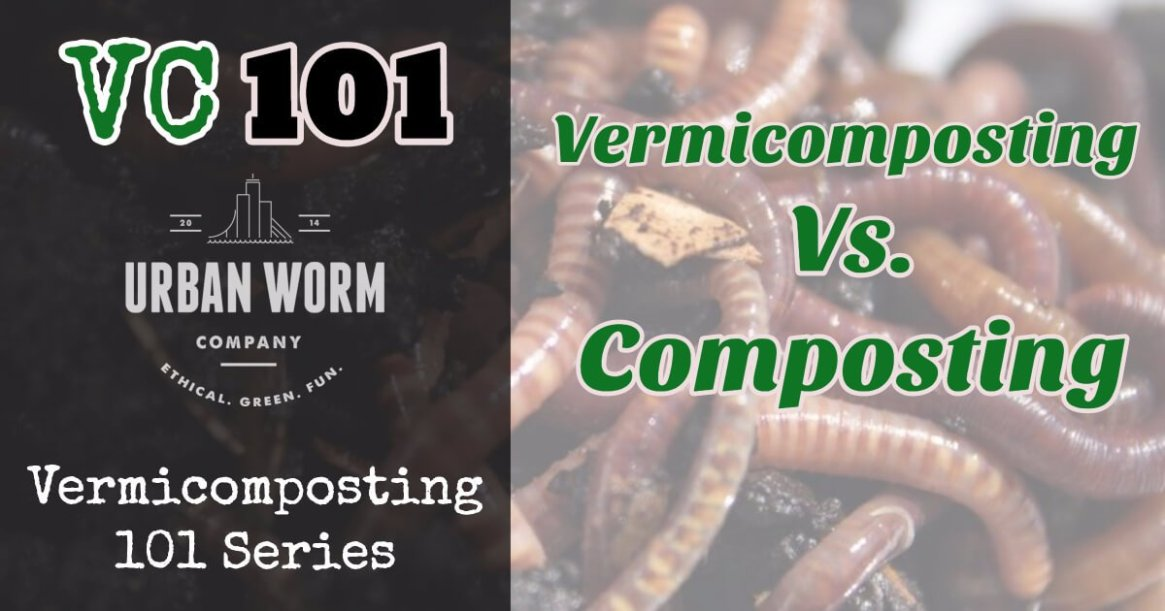 composting-vs-vermicomposting