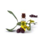 צנצנת שמן ופרחים מסביב