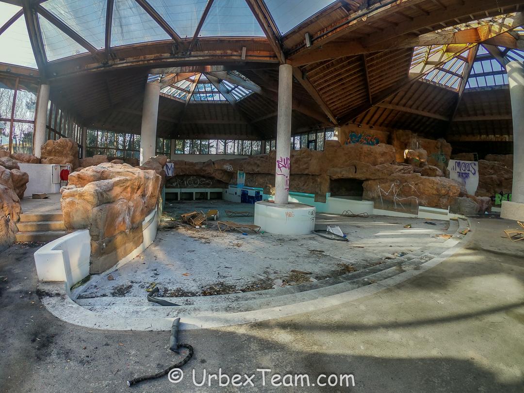Subtropical Swimming Pool 8