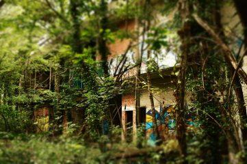 spookhotel-swamphotel-031