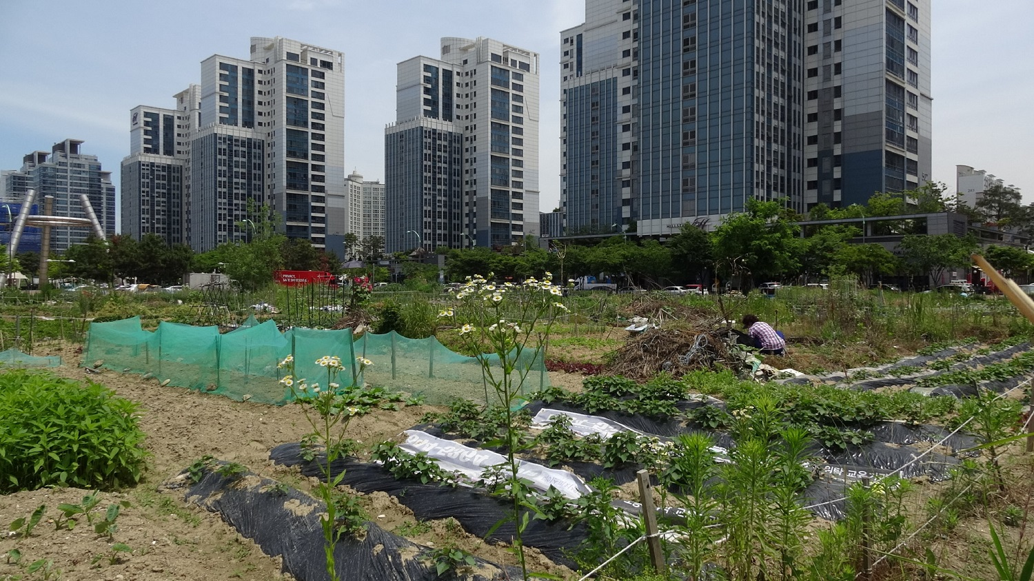 By invitation only: Songdo's smart city promise for the selected few