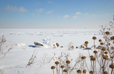 2014-02-18-snowtrek-06