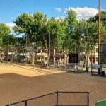 Murphy Playground