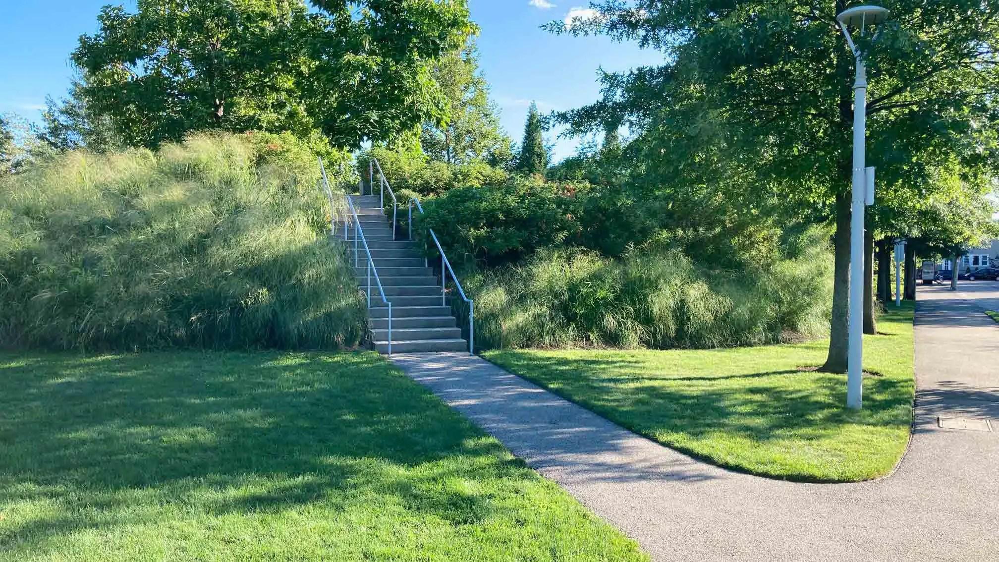 raymond mellone park allston