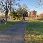 Danehy Park