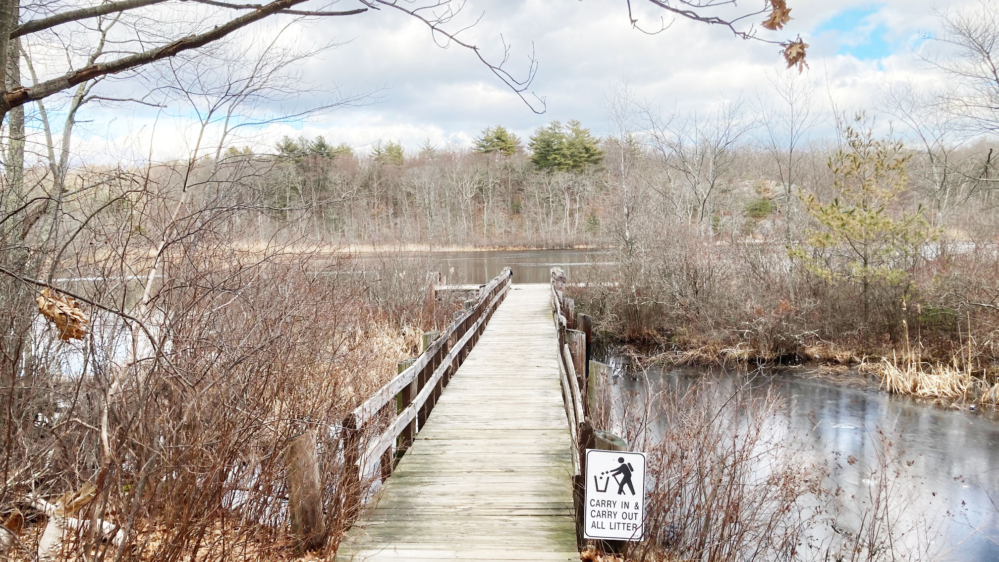 Stony Brook Reservation Boston