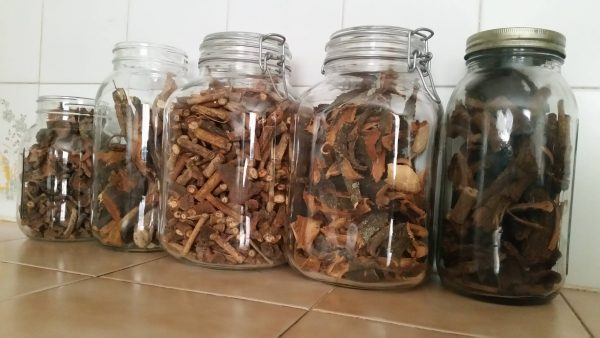 Herbalist losing out over drugs causing Kidney