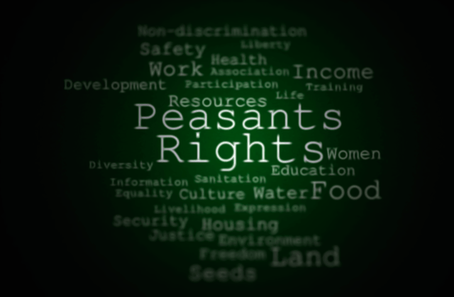 Support of the draft UN Declaration on the Rights of Peasants