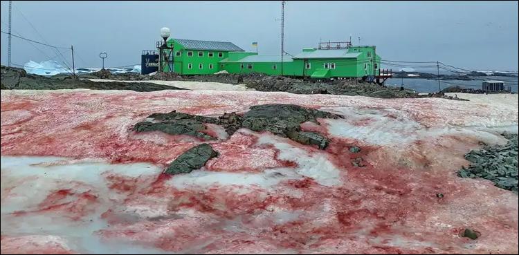 انٹارکٹیکا میں خوں رنگ برفباری سے لوگ خوفزدہ