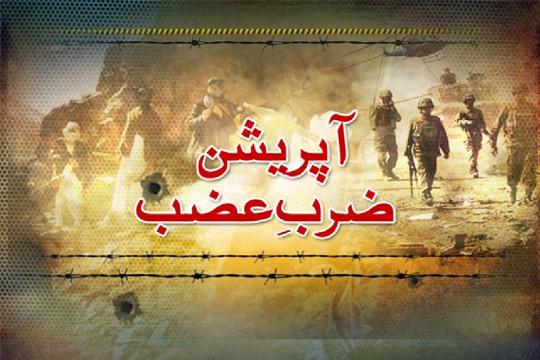 آپریشن ضرب عضب کا دائرہ گلگت تک بڑھایا جائے: آصف حسین میر