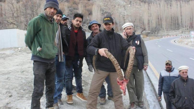 ہنزہ میں پاکستان کے سب سے بڑے ہمالین آئبیکس کا شکار