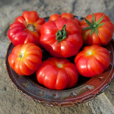 گلگت بلتستان سے ہزاروں کلو ٹماٹر کی اندرون ملک سمگلنگ کا انکشاف