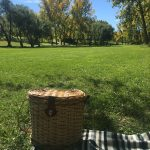 Calgary Parks for Best Fall Colours