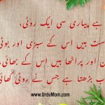 Urdu Poem about Roti