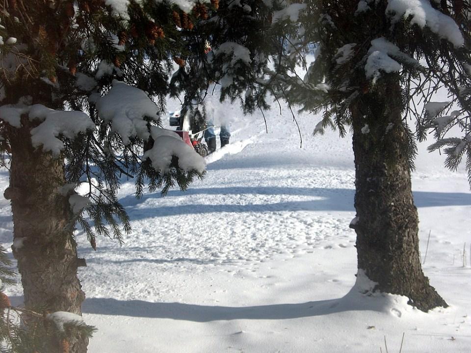 сняг 1