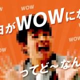 wowmaの評判