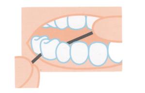 Utilizar el hilo dental