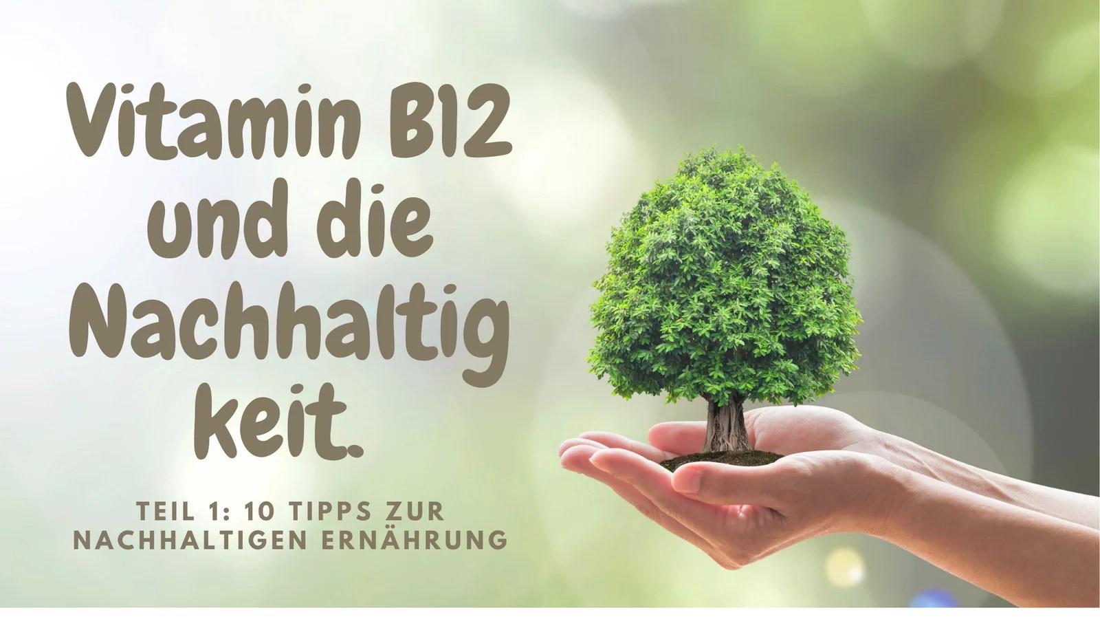 Vitamin B12 und die Nachhaltigkeit. Tipps zur nachhaltigen Ernährung