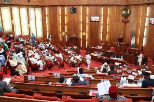 Abraka State Constituency Restoration Approved By Senate