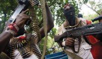 Niger Delta militants new