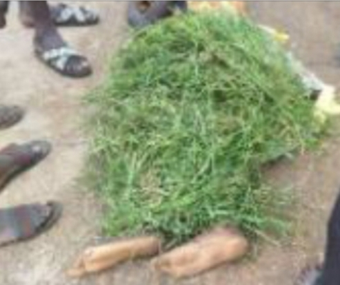 Delta Taskforce Officials Allegedly Chase Okada Rider To Death In Asaba