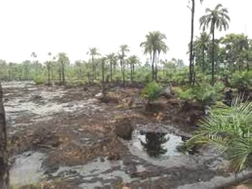 7 Urhobo Communities Threaten To Shut Down Heritage Energy Operations Over Oil Spill